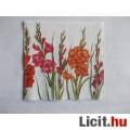 szalvéta - kardvirág