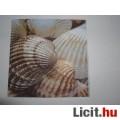 szalvéta - csigák, kagylók