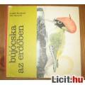Eladó Ludek Manasek:Bújócska az erdőben kihajtható könyv