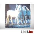 Eladó szalvéta - lovak