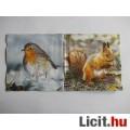 Eladó szalvéta - vörösbegy és mókus