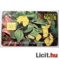 Telefonkártya 1995/10 - Cifra Kankalin (2képpel :)