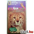 Eladó NG-Táncos Szafari Jogtiszta Videokazetta Használt (4képpel :)
