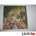 szalvéta - mókus
