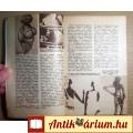 Univerzum 1961/8 (54.kötet) A Szépség és a Korszellem