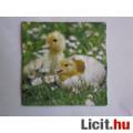 Eladó szalvéta - kacsák