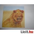 Eladó szalvéta - oroszlán