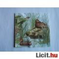 szalvéta - vadkacsák
