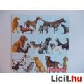 Eladó szalvéta - kutyák
