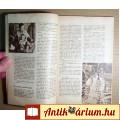Univerzum 1969/11 (153.kötet) Üveg vagy Műgyanta ?