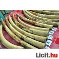 Eladó 34.5 kg, 14 db. Elefántagyar gyűjtemény, elefántcsont, hivatalos (CERT