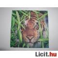 szalvéta - tigris